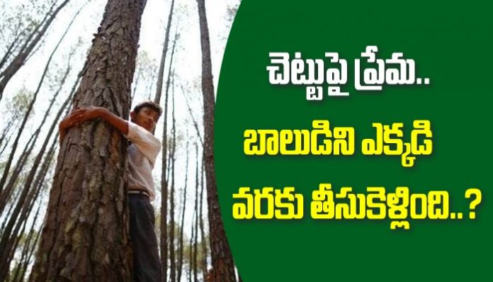 WhatsApp Image 2021 02 24 at 10.45.01 AM Student who loved the tree .. What did the governor do ..?  - Prime Time Zone daily (Prime Time Zone): Latest Telugu News |  Breaking news