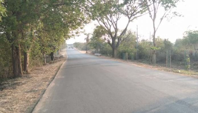 kamareddy Lonely people are their target