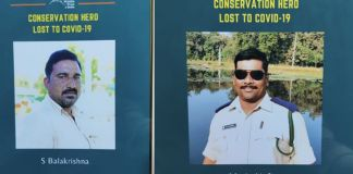 Casualty Fund for the families of Forest employees who died with Covid